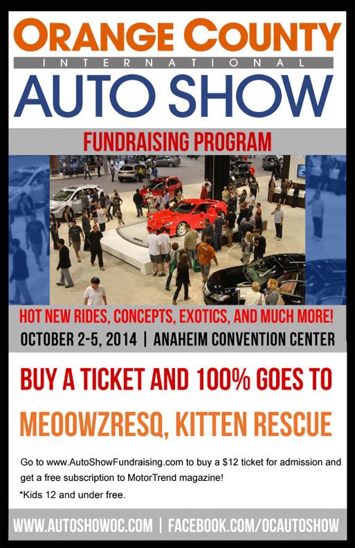 auto show fundraiser flyer