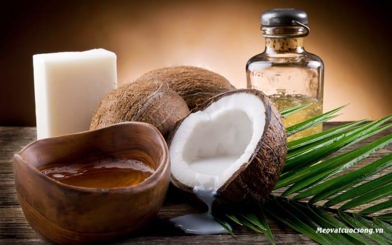 Tinh dầu dừa giúp cai nghiện rượu