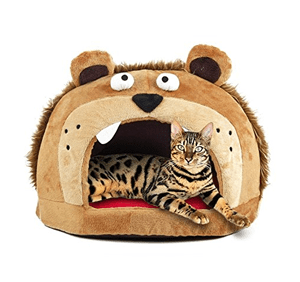 cool unique cat beds