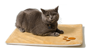 self warming thermal cat beds