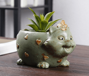 cat planters plant pots