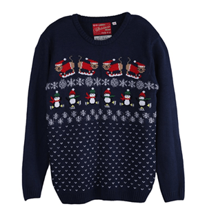 ugly cat christmas sweater women