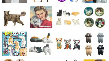 cat magnets feature