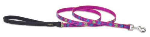 Premium Leash with Padded Handle - Wing It