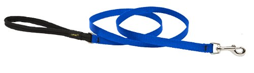 Premium Leash with Padded Handle - Blue