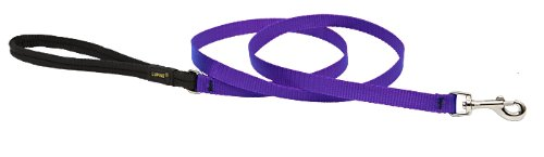 Premium Leash with Padded Handle - Purple