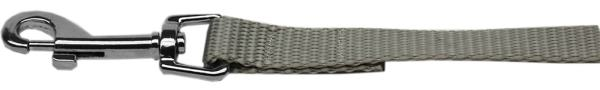 "Plain Nylon Leash 3/8"" by 4ft Silver"