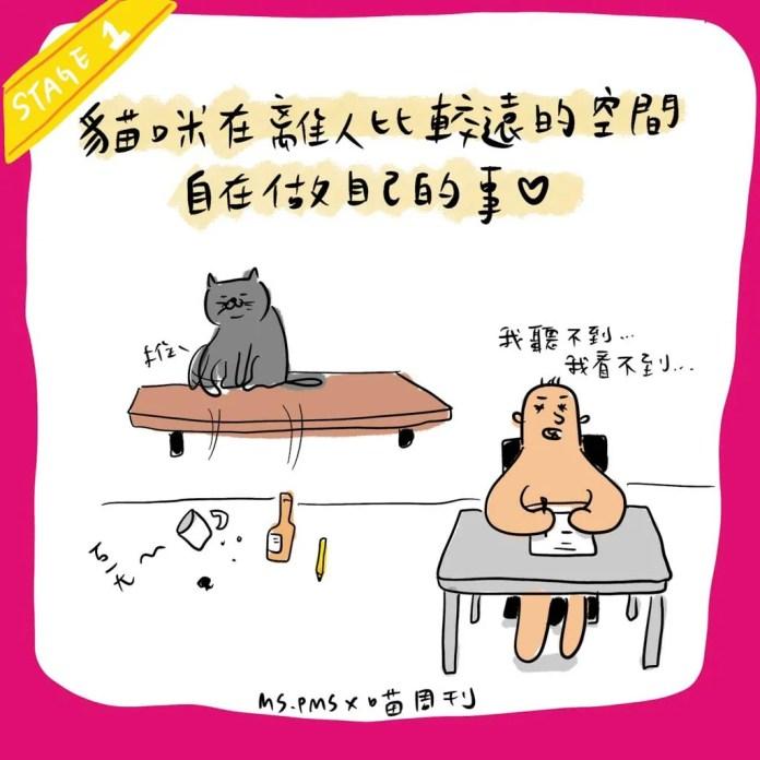 8 21 | 喵周刊 Meow Weekly