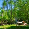 南信州「四徳温泉キャンプ場」の「村人」になりました!?みぃ君と父子キャンプ