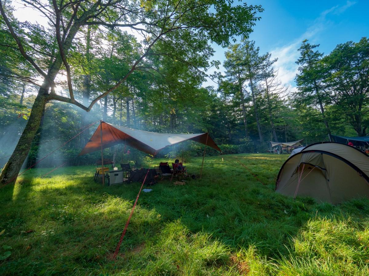 戸隠イースタンキャンプ場|美しいカラマツの森で3泊4日避暑キャンプ【2018.8】