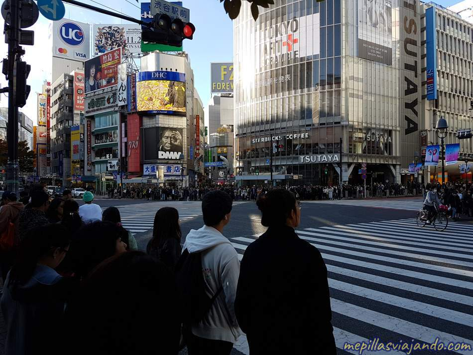 Viaje a Japón, información básica