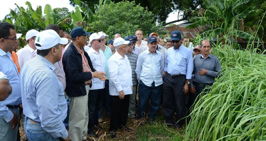 El Ministro de Economía, Temístocles Montás, observa una de las plantaciones que desarrollan los productores mocanos de aceites esenciales.