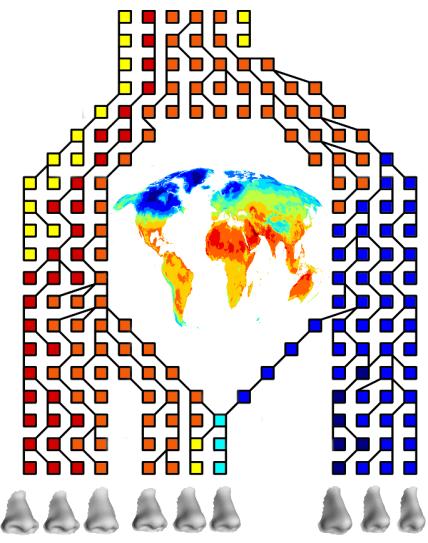 Dünyanın Burun Haritası