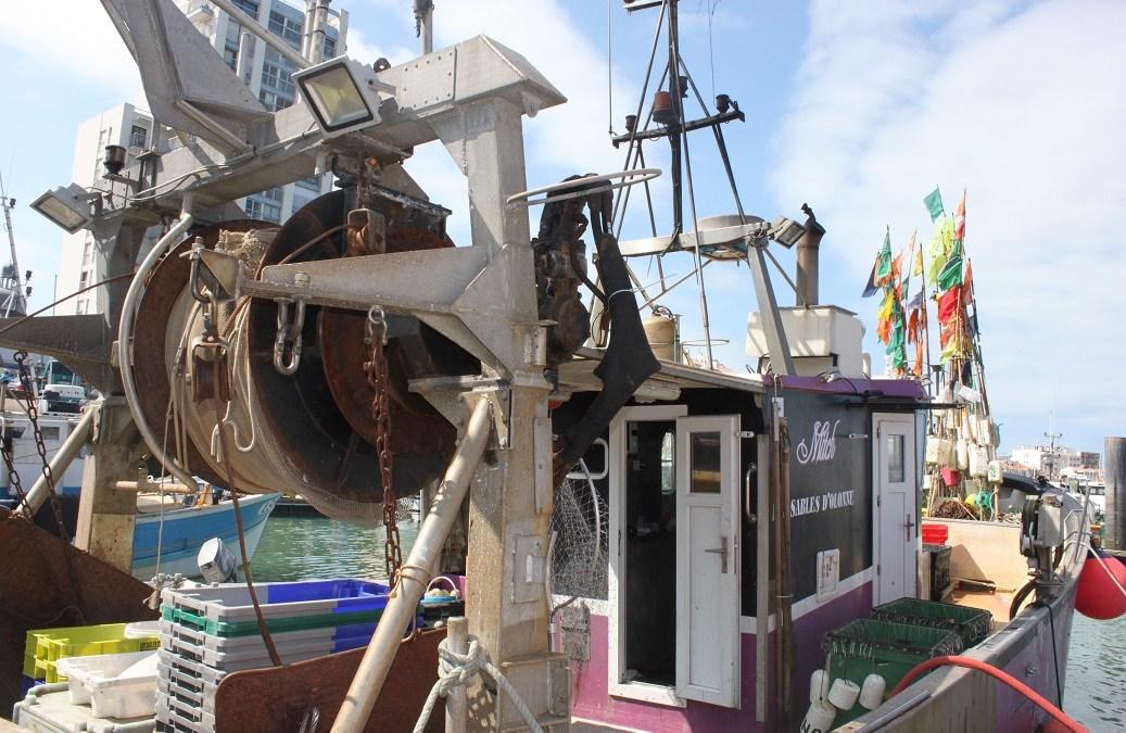 La pêche aux Sables à l'heure du Vendée-Globe