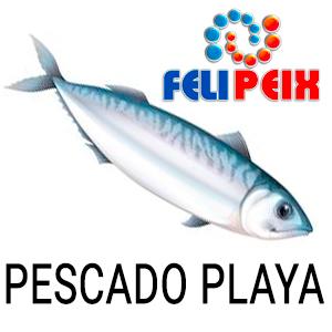 04 PESCADOS PLAYA