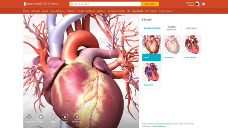 2014 Sep 5 New MSN Preview Launch - Visuals - Anatomy