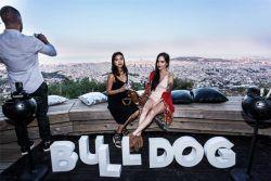 LOLA_Bulldog-