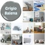 grigio_balena