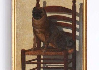 Carlino ( pug ). Escuela popular andaluza