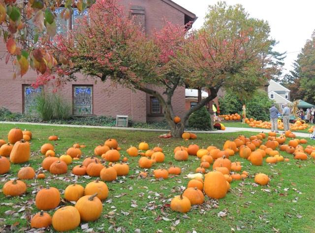 Pumpkin Palooza at HPC (2)10.17.15