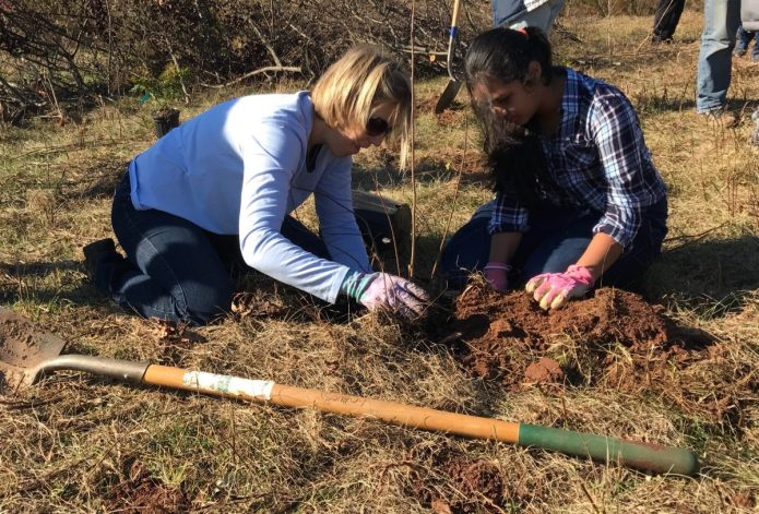 Earth Day Volunteers Needed for Tree Planting