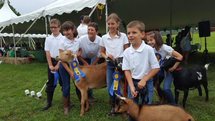 Mercer County 4-H Hosts 101st Fair