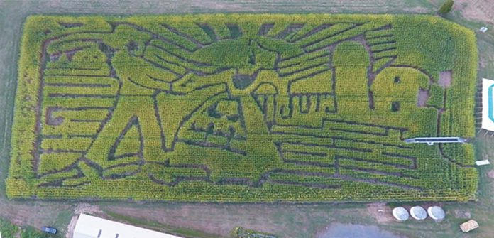 Look for clues involving rhyme at Howell Farm during Corn Maze time