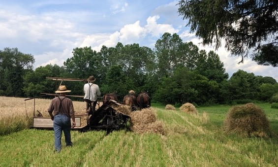 "Howell Farm offers ""Share the Harvest"" tours"