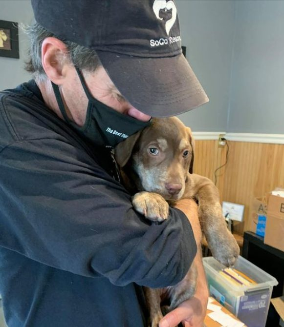 Community asked to help save dog rescue organization