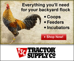 Everything you'll need for your backyard flock at TractorSupply.com