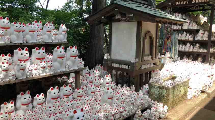 Gotoku-ji : Le temple du Maneki-Neko (chats) à Tokyo