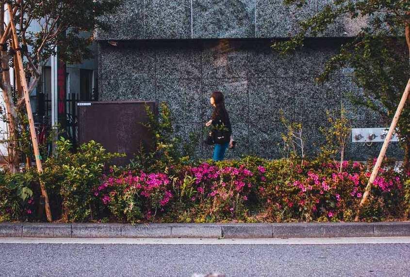 Au Japon : on roule à gauche mais pas seulement…