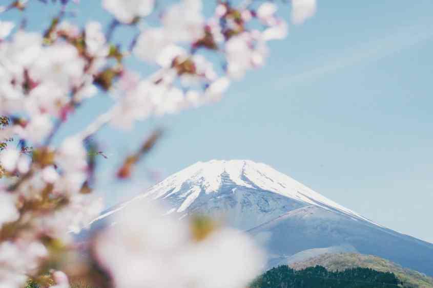 Coronavirus : Les frontières japonaises rouvriront-elles avant fin 2020 pour les touristes ?