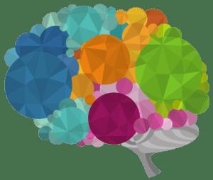 séminaire mind mappers intelligents anglet olatu benoit dandine merci les cartes mentales mind mapping neuro ergonomie neuro sciences