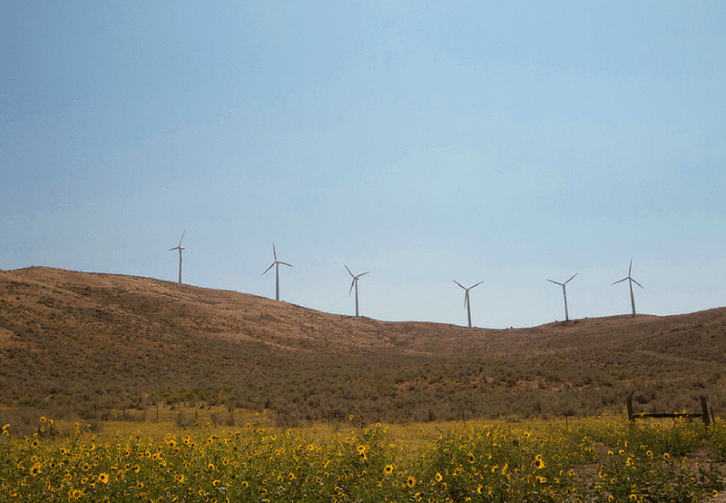 Sembcorp Commissions 250 MW of ISTS-Connected Wind Projects in Tamil Nadu
