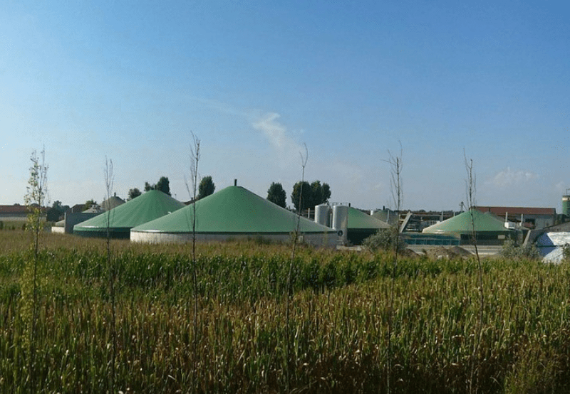 KERC Dismisses Petition Claiming Interest for Delayed Payment for a Biomass Project
