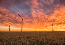 Uzbekistan Announces its First Wind Tender for 100 MW