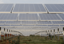 NHPC Diversifies into Solar Power Business