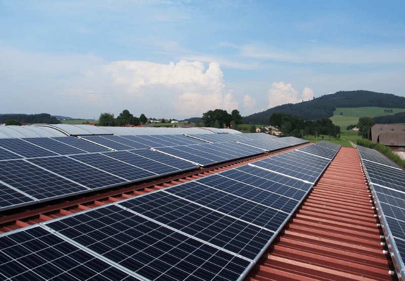 Winners in the Rajasthan Electronics and Instruments' 50 MW Rooftop Solar Tender