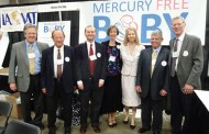 Mercury Free Baby 2014 Newsletter