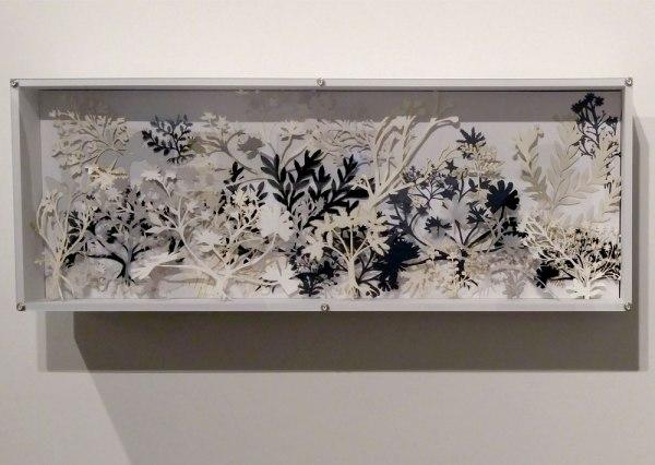 "BOX GARDEN, 2017, cut-papers, hand-made shadow box with plexiglass, 15""x 40"" x 5.5"" AfterTheHerbalof al-Ghafiqi, Botanical Medicinal Manuscript, 12th c., Andalusia, Spain"