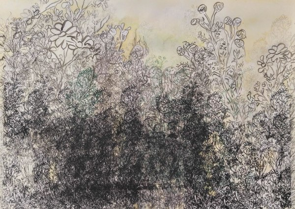 CHAMOMILE GARDEN UNDER THE MEDIEVAL SUN, 2017, silkscreen, graphite and watercolor on paper, 22″x 30″