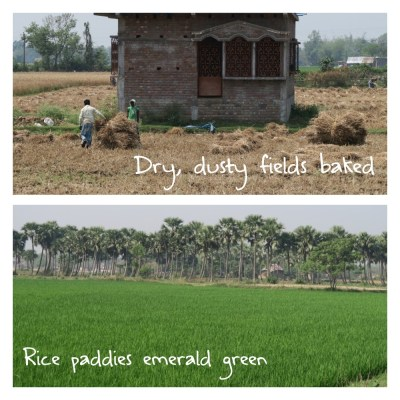 India–A Study of Contrasts