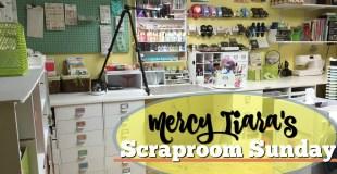 Scraproom ReOrganziation: Preliminary Tour
