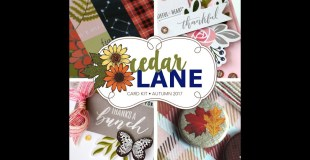 Cedar Lane Card Kit (and a Giveaway!)