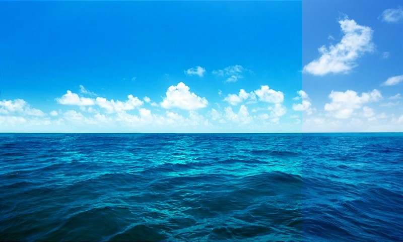 Denize Doğru Bir Adım – Mert Eker