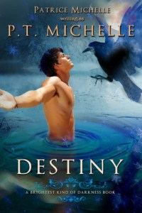 Destiny (Brightest Kind of Darkness #3) by P.T. Michelle