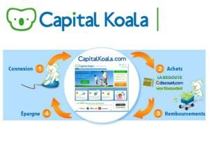 capital-koala-epargner-grace-aux-achats-sur-le-net-6122