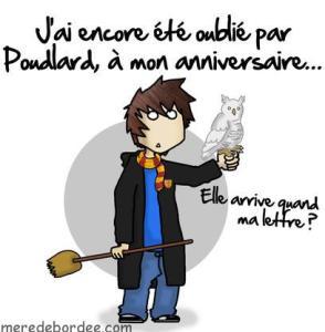 Poudlard-anniversaire-ConvertImage