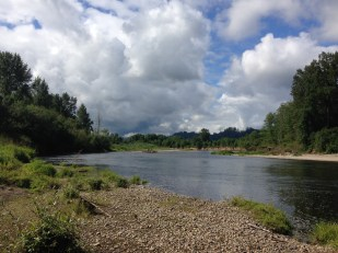 The Chehalis River in SW Washington State